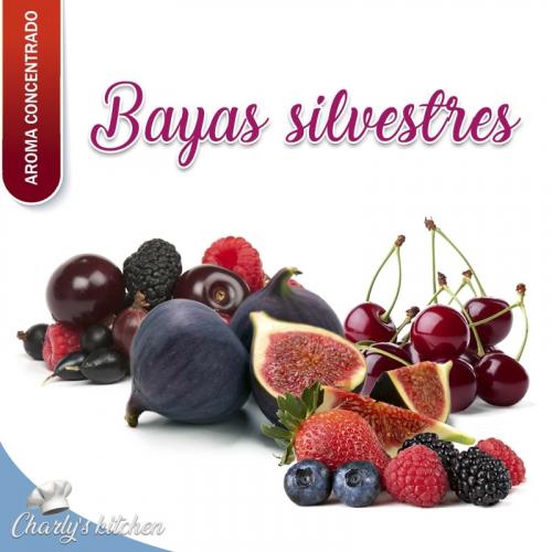 aroma BAYAS SILVESTRES