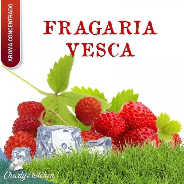 aroma FRESAS SILVESTRES