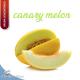 aroma CANARY MELON